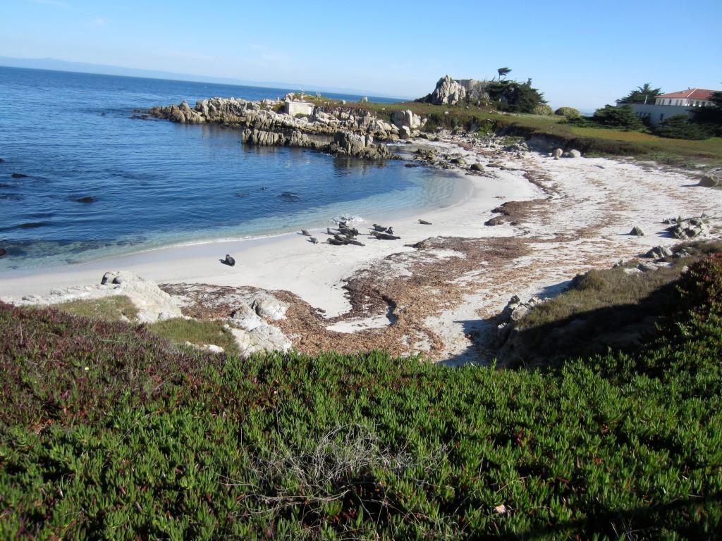 beautiful Monterey, CA