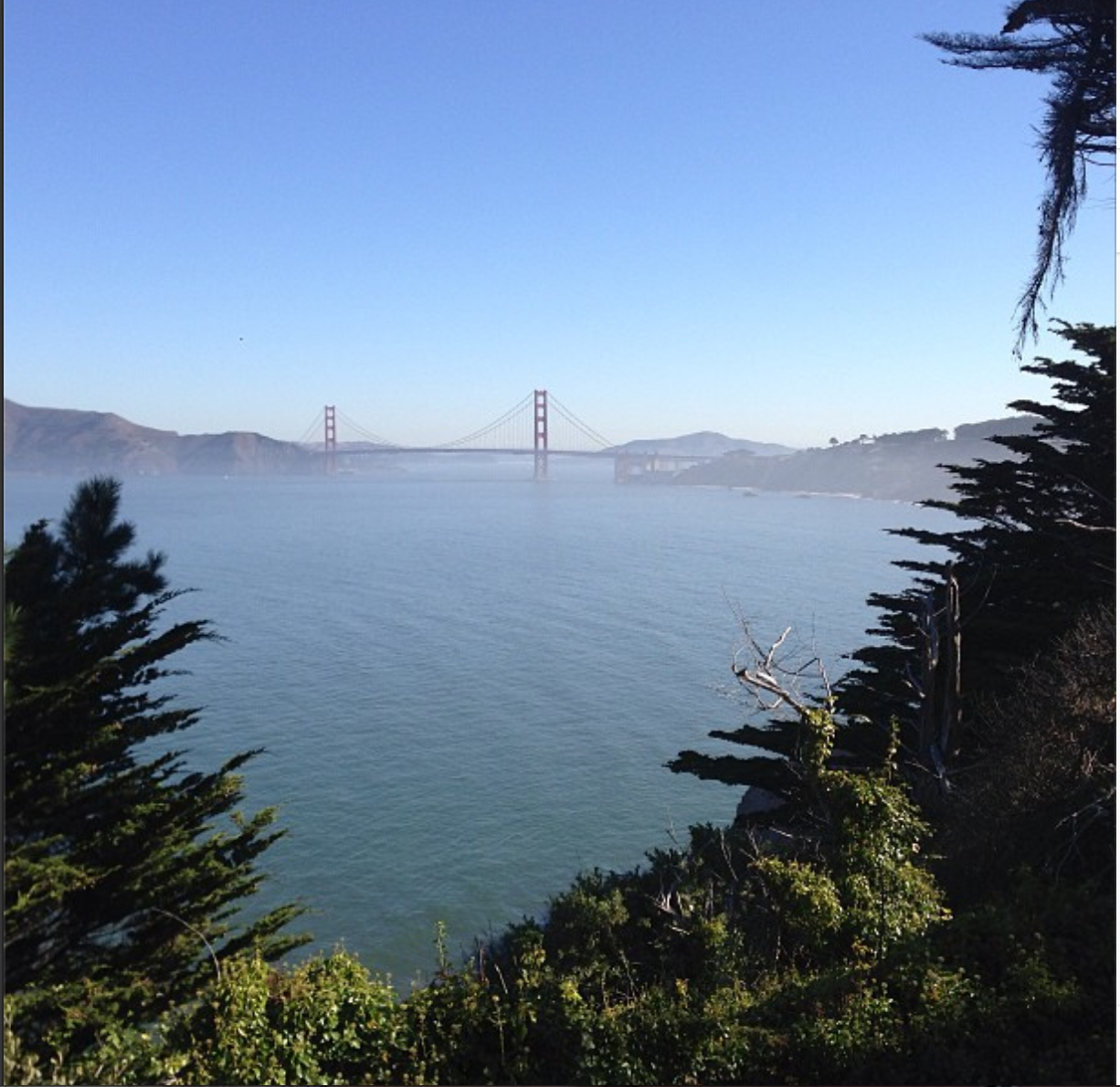 This is what's been happening lately: sunshine in San Francisco.  It's a September rarity.  (Land's End).