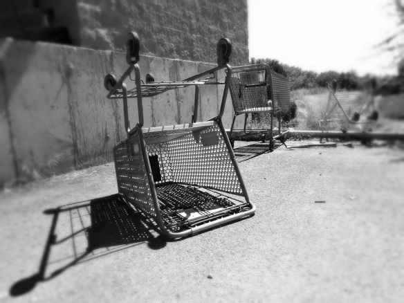 shoppingcart2